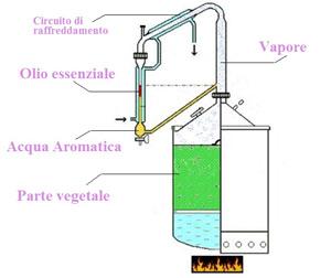 estrattore-1